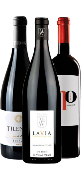 Pack de Supervinos MGWines