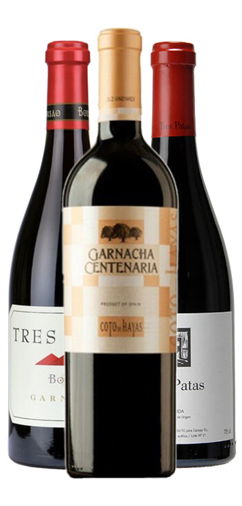 Pack Top Garnachas Parker