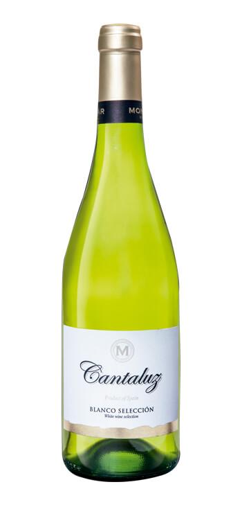 Vino Blanco Cantaluz