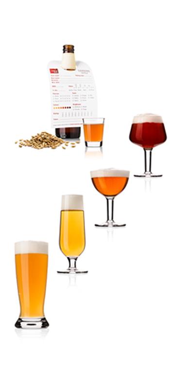 Colección vasos de cerveza