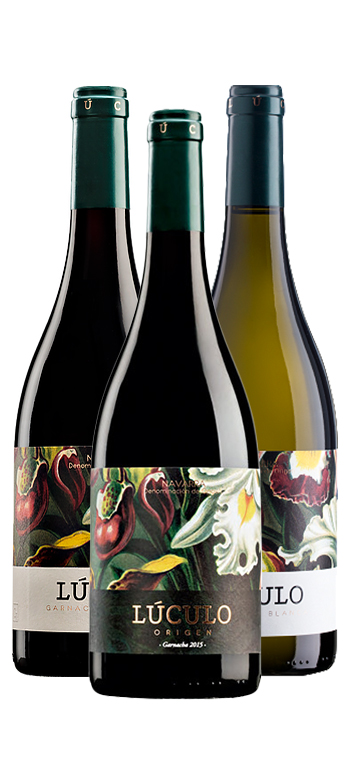 Pack de 3 Vinos Garnacha
