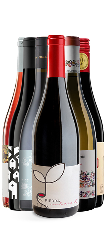 Pack Especial Mejores Vinos Ecologicos